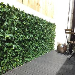 Extendable Instant Laurel Hedge